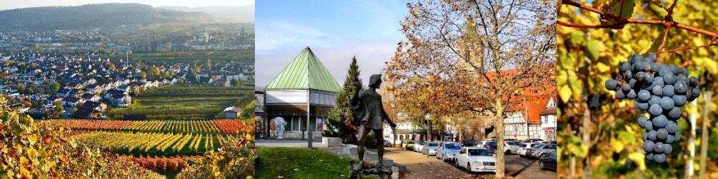 Schwäbischer Albverein | Ortsgruppe Weinstadt
